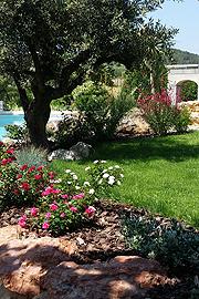 Le jardin du sud ou jardin m diterran en un jardin bien for Definition du jardin